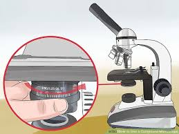 Parts Of A Compound Light Microscope How To Use A Compound Microscope 12 Steps With Pictures