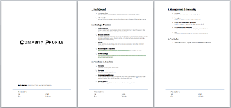 free download layout company profile company profile template free download simple business profile