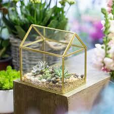 copper house shape moss fernglass box flower pots wardian case