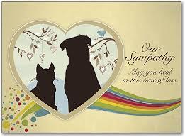 sympathy cards for pets rainbow bridge sympathy cards smartpractice veterinary
