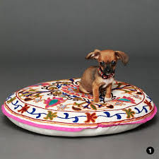 Cute Puppy Beds Best 25 Modern Dog Beds Ideas On Pinterest Dog Bed Cute Dog