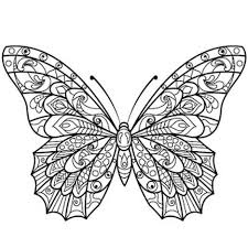 butterflies coloring pages for adults part 2 free resource for