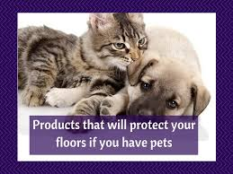 Pet Safe Laminate Floor Cleaner Helpful Items If You Have Pets And Want To Protect Your Floors