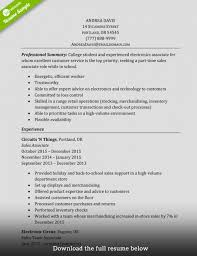 perfect sales resume 10 sales resume samples hiring managers will notice template 2015