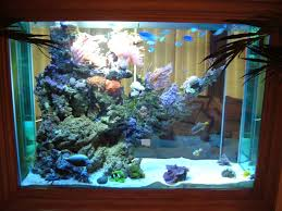 Live Rock Aquascaping Ideas Live Rock And Aquascaping Ultimate Reef