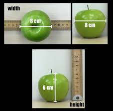 granny smith u0027s skins questioning my metacognition