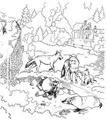 zoo coloring pages watching animals kitty zoo
