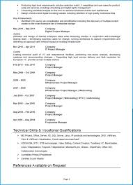 Project Manager Resume Template Template Project Manager Cv Template