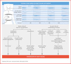 mechanisms and clinical consequences of untreated central sleep