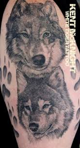 wolves by kent mcknight white tiger rochester ny