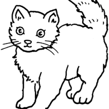 cat coloring pages free printable cat coloring sheet kids