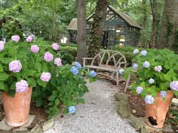 design a woodland garden shade garden ideas hgtv