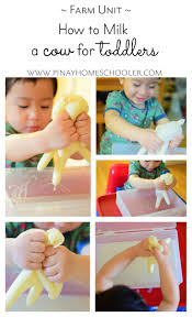 milking cow activity for toddlers learning activities