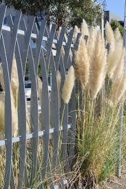 best 25 steel fence ideas on pinterest steel railing design