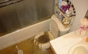 marvelous basement bathroom with septic tank gallery basement