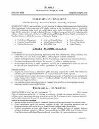 Free Curriculum Vitae Resume Template Vitae Template Word Resume Templates Sample Template Word
