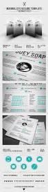 Best Resume Builder For Mac by 97 Best Creative Cv Images On Pinterest Resume Ideas Cv Design