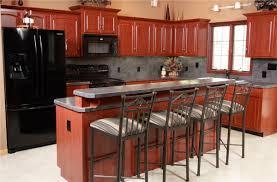redo kitchen cabinets redo kitchen cabinets lutz refacing exteriors