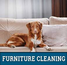 Upholstery Long Island Carpet Cleaning Long Island Copiague Ny Cleannfresh Us