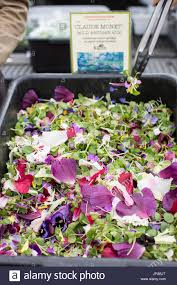 edible flowers for sale salad mix of buckwheat micro greens and edible flowers for sale at