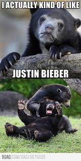 Confession Bear Meme - confession bear meme funny sh t with a side of tasteless humor