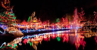 the festival of lights at the cincinnati zoo mercy etcetera