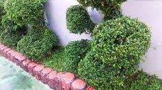 Home Landscape Design Software Reviews Cool Home Landscape Design Software Review Compare 150 150 Read