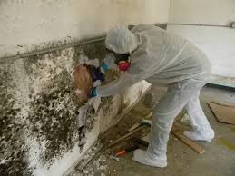 what u0027s the most effective way to remove mildew smells odors from