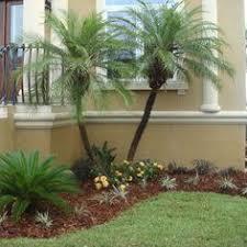 landscaping florida landscape design ideas profishop us
