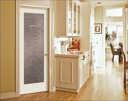 Kitchen Cabinet Door Storage Frosted Glass Cabinet Doors Medium Size Of Glass Cabinet Doors