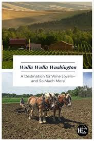 Saffron Mediterranean Kitchen Walla Walla Wa - walla walla washington wine onions and more wander with wonder
