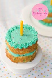best 25 mini birthday cakes ideas on pinterest baby 1st