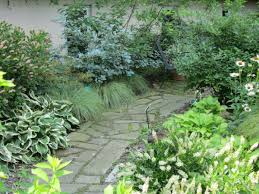 native ohio plants ohio nursery and landscape association centennial garden