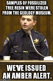 Amber Meme - you ll think of this meme the next time your local authorities do