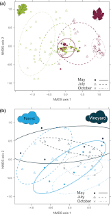 foliar fungal communities strongly differ between habitat patches in