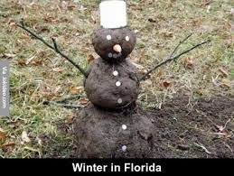 Florida Winter Meme - winter in florida jpg