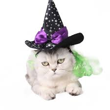 witch costume for cats online get cheap cat witch costume aliexpress com alibaba group