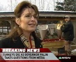 malkin turkey jive palin bashers strike again