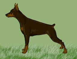 5 easy ways to draw a dog with pictures wikihow
