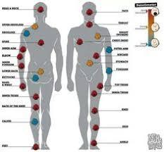 tattoo pain level chart female female tattoo pain chart things i love pinterest tattoo pain