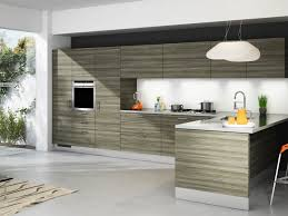 usa kitchen cabinets extraordinary modern kitchen cabinets catchy home design plans
