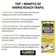 amazon com harris roach glue traps w lure 2 pack natural