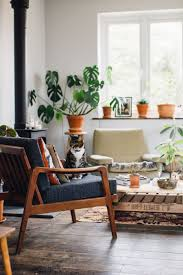 cats and plants a plant filled living space urban jungle