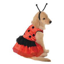 Small Dog Halloween Costumes Lovely Ladybug Costume Dogs Ladybug Costume Dog Products