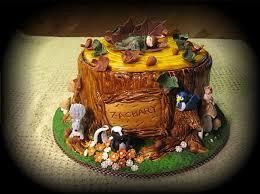 children u0027s cakes cakes unleashed