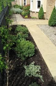 landscape low maintenance ideas for front of house deck home bar