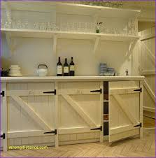 Building Kitchen Cabinet Doors New Diy Kitchen Cabinet Doors Designs Home Design Ideas Picture