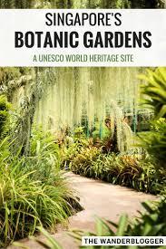 World Botanical Gardens The Botanic Gardens Singapore S Tropical Garden Paradise The