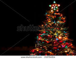 tree lights stock images royalty free images vectors
