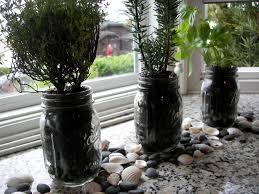 mason jar herb garden little bits of